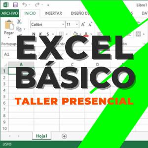 ✅ Excel Básico por Zoom